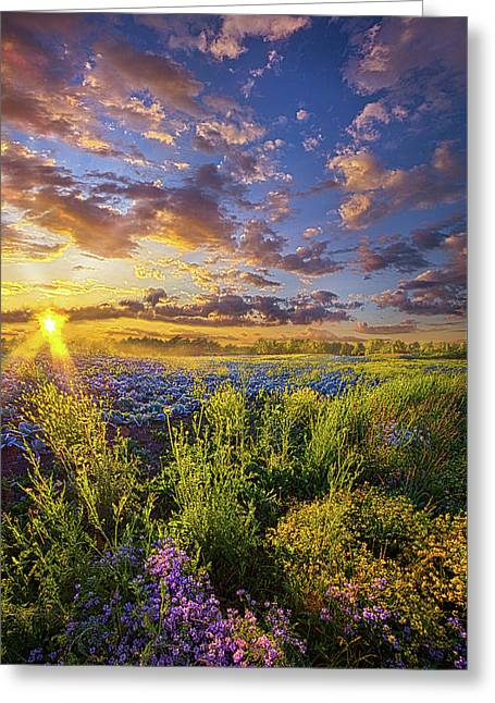 Striving To Be Greeting Card by Phil Koch