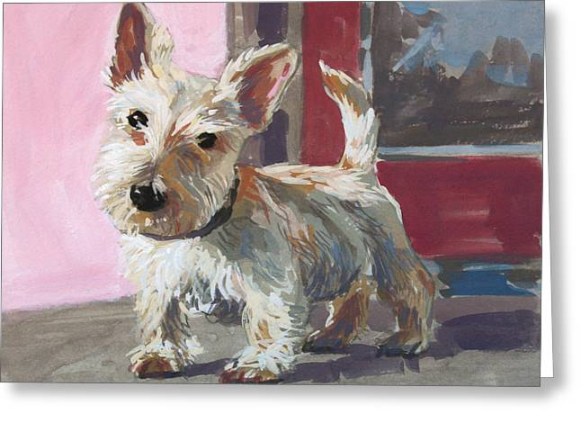 Scottish Terrier Puppy Greeting Cards - Stuart the Scotty Greeting Card by William Noonan