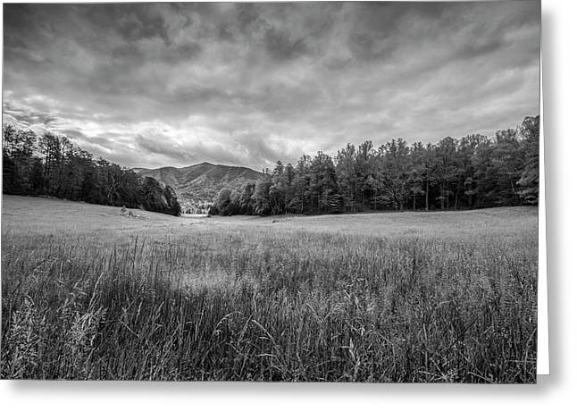 Stuck In The Field II Greeting Card by Jon Glaser