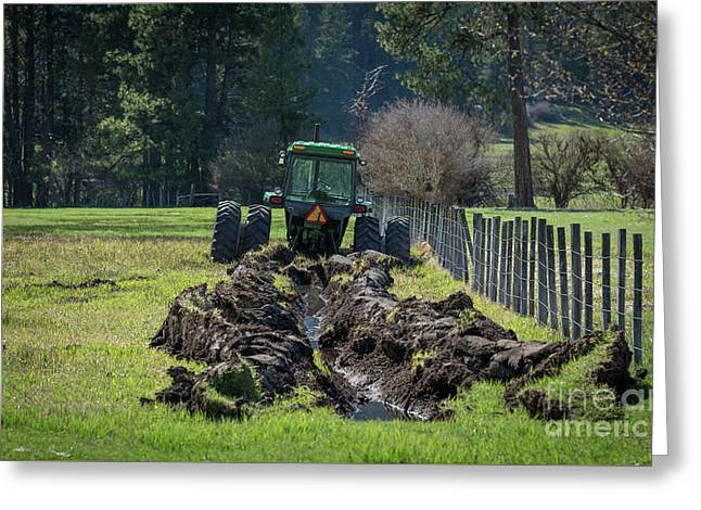 Stuck In The Muck Agriculture Art By Kaylyn Franks Greeting Card