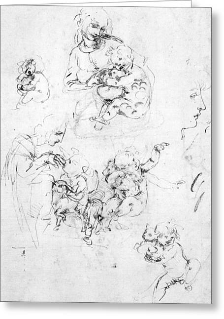 Studies For A Madonna With A Cat Greeting Card by Leonardo da Vinci