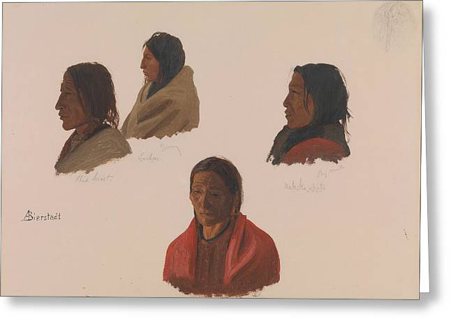 Studies Of Indian Chiefs Made At Fort Laramie Greeting Card by Albert Bierstadt