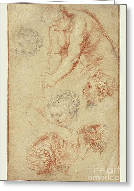 Studies Of Women By Peter Paul Rubens Greeting Card