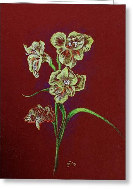 Study Of A Gladiola Greeting Card