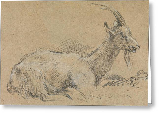 Study Of A Goat Greeting Card
