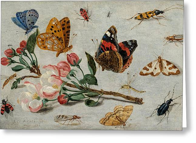 Study Of Butterflies And Other Insects With A Sprig Of Apple Blossom Greeting Card
