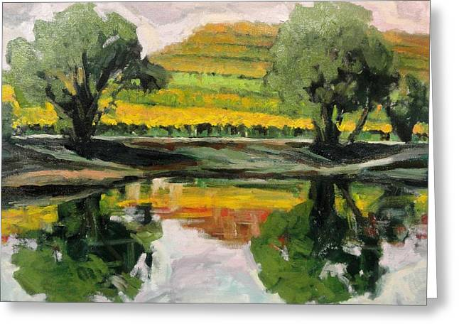 Study Of Reflections And Vineyard Greeting Card