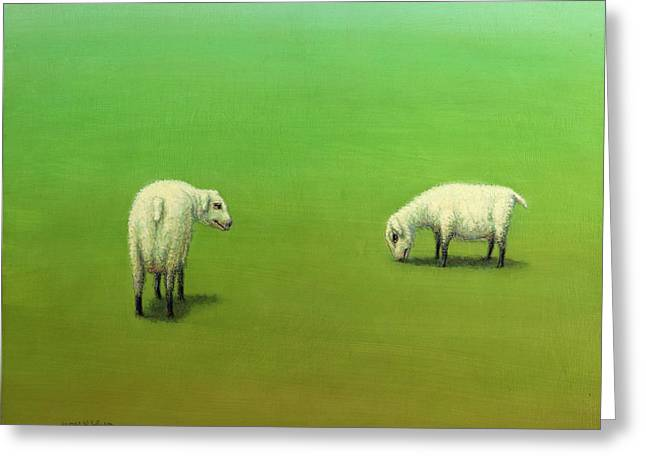 Study Of Two Sheep Greeting Card