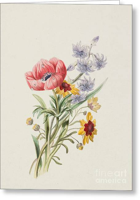 1860 Greeting Cards - Study of wild flowers Greeting Card by English School