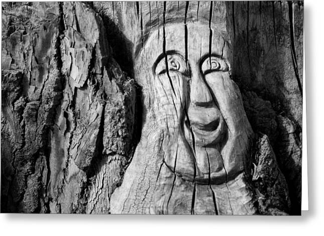 Stump Face 3 Greeting Card