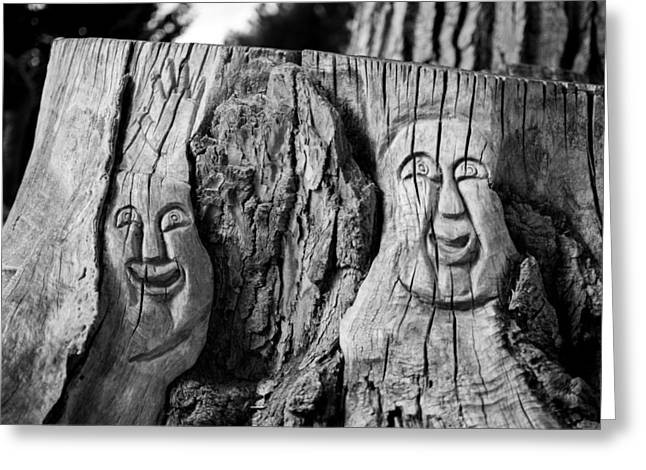 Stump Faces 2 Greeting Card