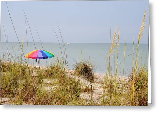 Stump Pass Beach State Park Greeting Card by Steven Scott