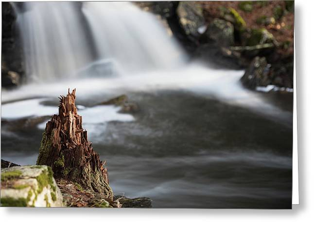 Stumped At The Secret Waterfall Greeting Card