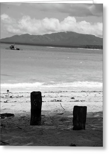 Stumped Here Greeting Card by Jez C Self