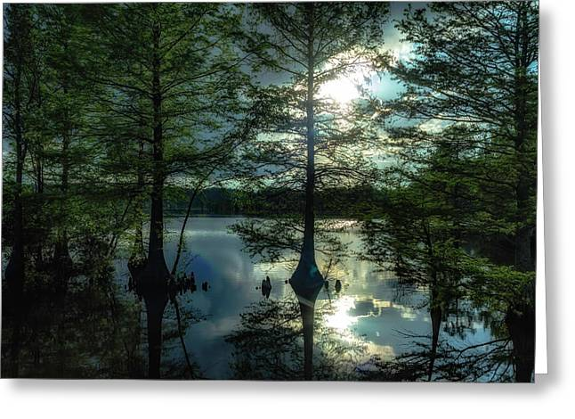 Stumpy Lake Greeting Card