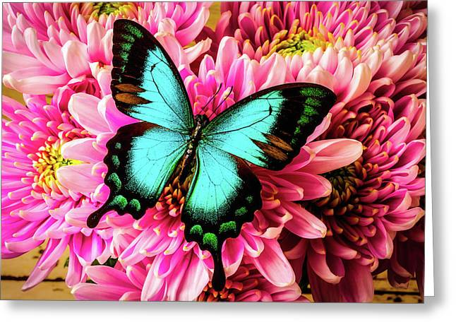 Stunning Green Butterfly Greeting Card