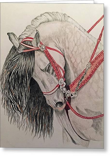 Stunning Spanish Horse Greeting Card by Brenda Brown
