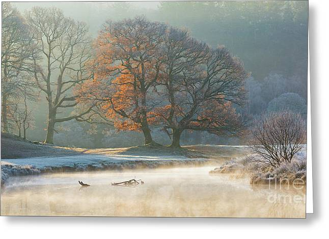 stunning winter light on the river Brathay Greeting Card