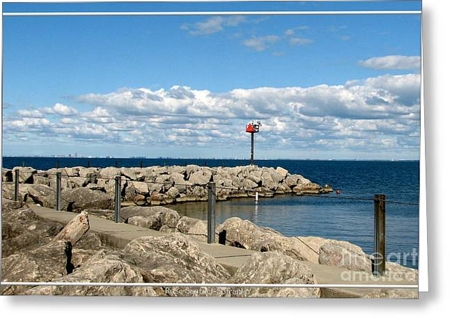 Sturgeon Point Marina On Lake Erie Greeting Card