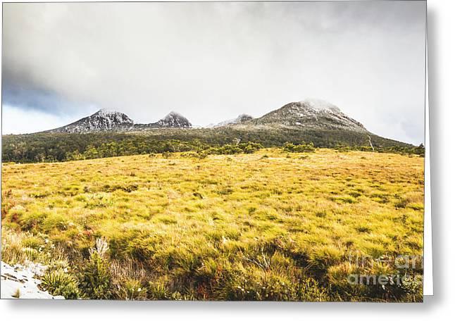 Sub Alpine Range Greeting Card