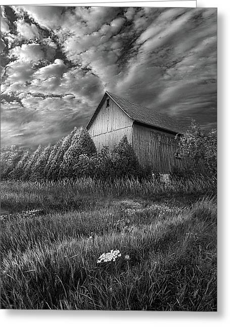 Sublimity Greeting Card by Phil Koch