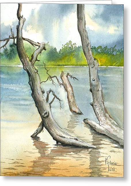 Submerged Cottonwood Greeting Card