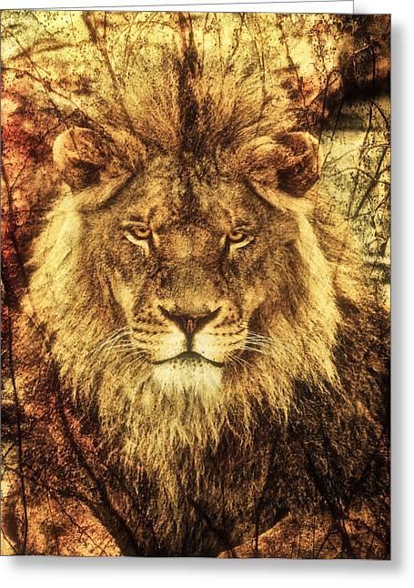 Subtle Lion Greeting Card