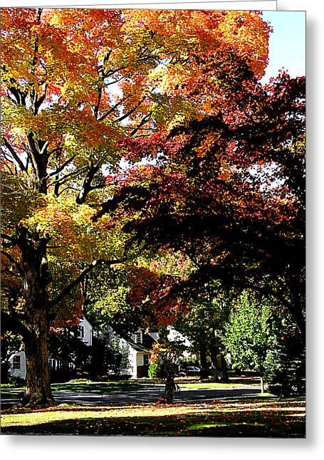Suburban Autumn Greeting Card by Susan Savad