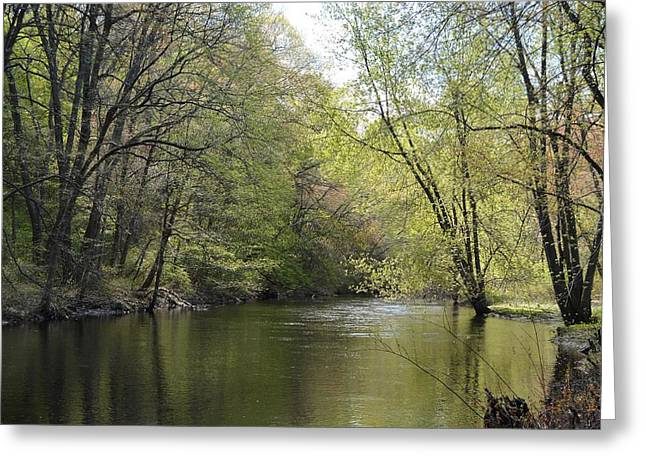 Sudbury River In Spring Greeting Card