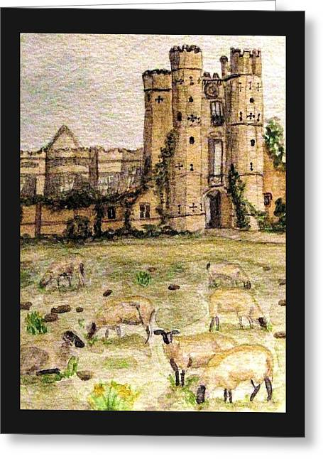 Suffolk Sheep Grazing In Sussex Greeting Card by Angela Davies