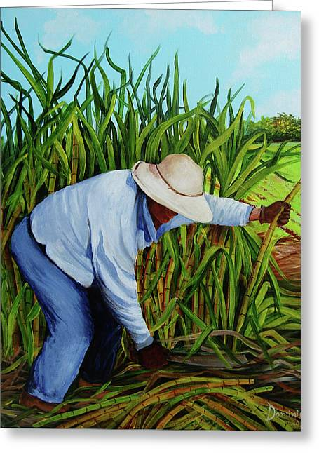 Sugar Cane Harvest Greeting Card