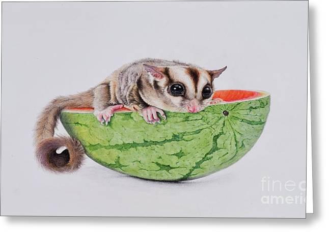 Sugar Glider On Melon Greeting Card by Biophilic Art