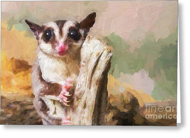 Sugar Glider - Painterly Greeting Card