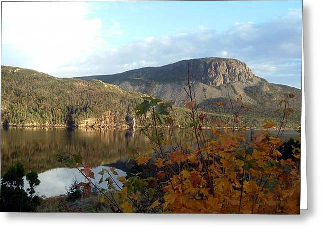 Sugarloaf Hill In Autumn Greeting Card by Barbara Griffin