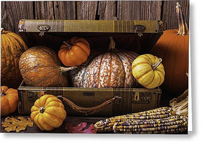 Suitcase Full Of Pumpkins Greeting Card by Garry Gay