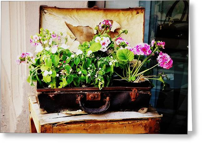 Suitcase Of Flowers Greeting Card