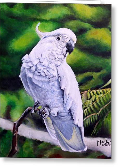 Sulphur-crested Cockatoo Greeting Card by Marilyn McNish