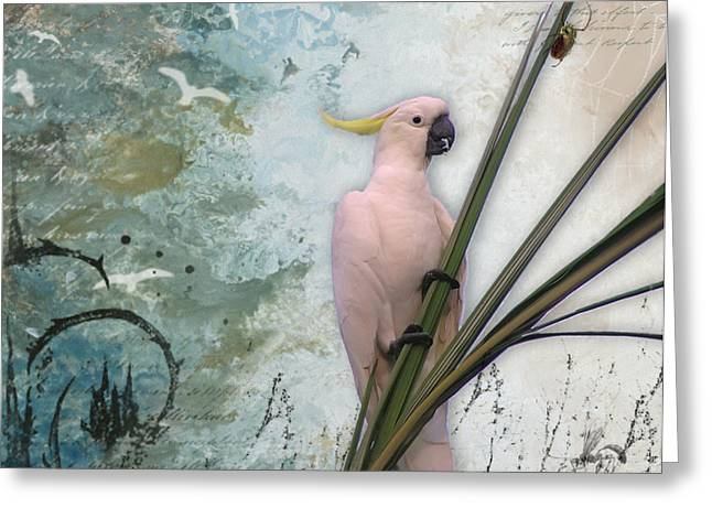Sulphur-crested Cockatoo And Beetle Greeting Card