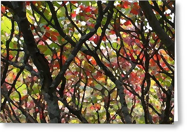 Sumac 53 Greeting Card