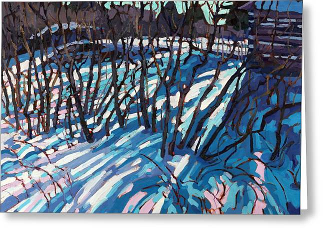 Sumac Snow Shadows Greeting Card