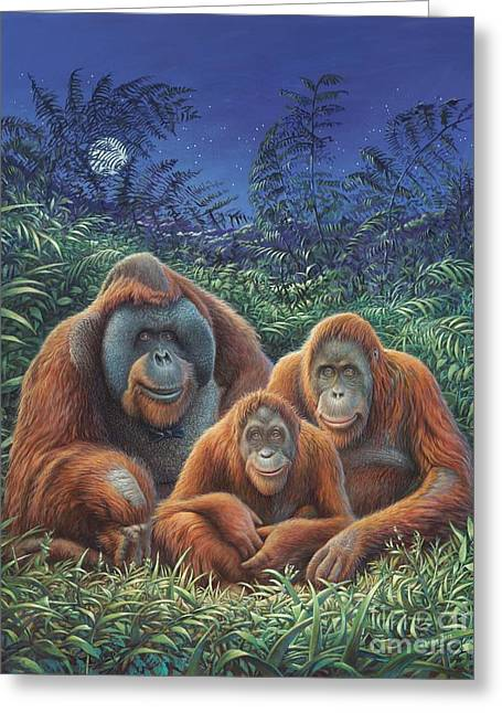 Sumatra Orangutans Greeting Card