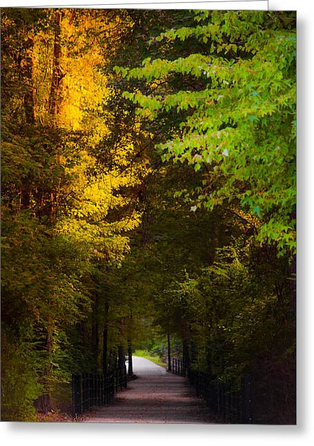 Summer And Fall Collide Greeting Card