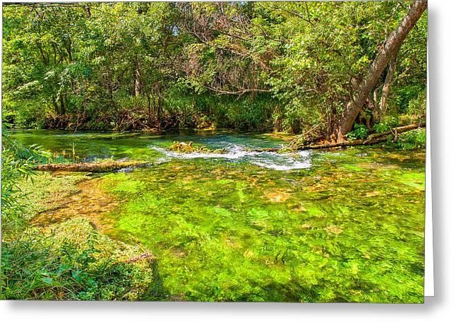 Greeting Card featuring the photograph Summer At Alley Springs by John M Bailey