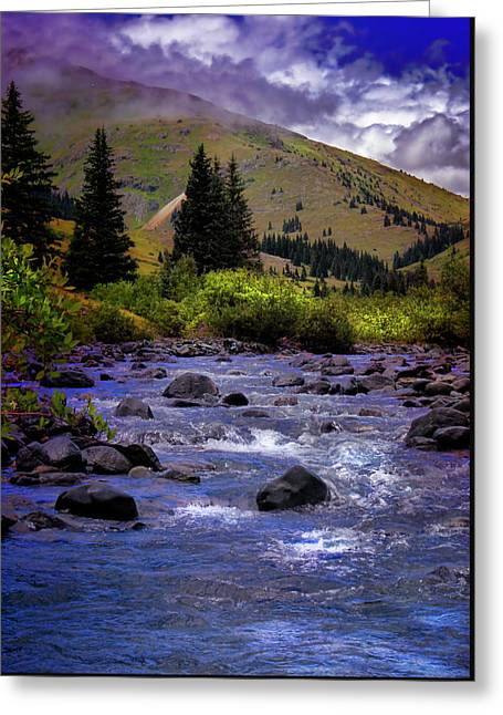 Greeting Card featuring the photograph Summer At The Animas River by Ellen Heaverlo