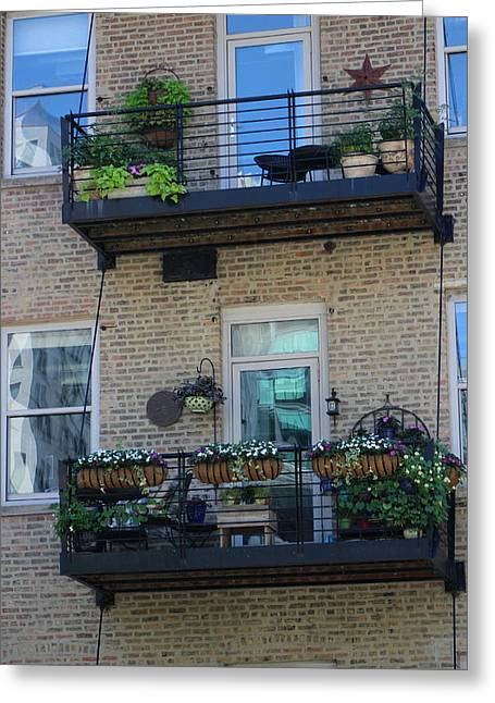 Summer Balconies In Chicago Illinois Greeting Card