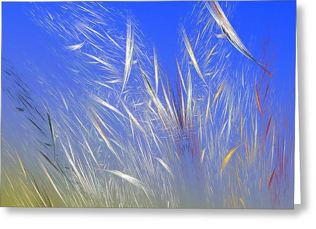 Summer Breeze Greeting Card by David Lane