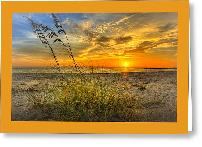 Summer Breezes Greeting Card by Marvin Spates
