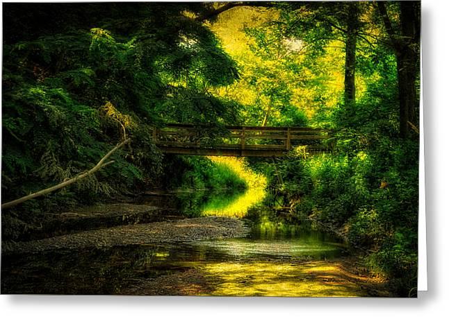 Summer Creek Greeting Card by Thomas Woolworth