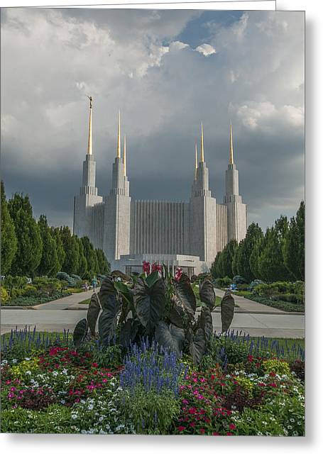 Summer Day At The Lds Greeting Card