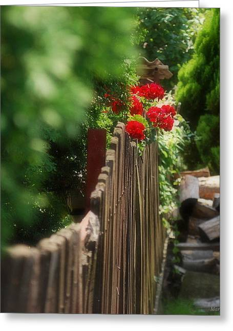 Greeting Card featuring the photograph Summer Day... by Marija Djedovic